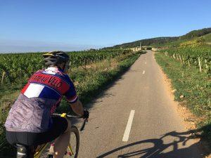 Route des Grands Crus Pommard