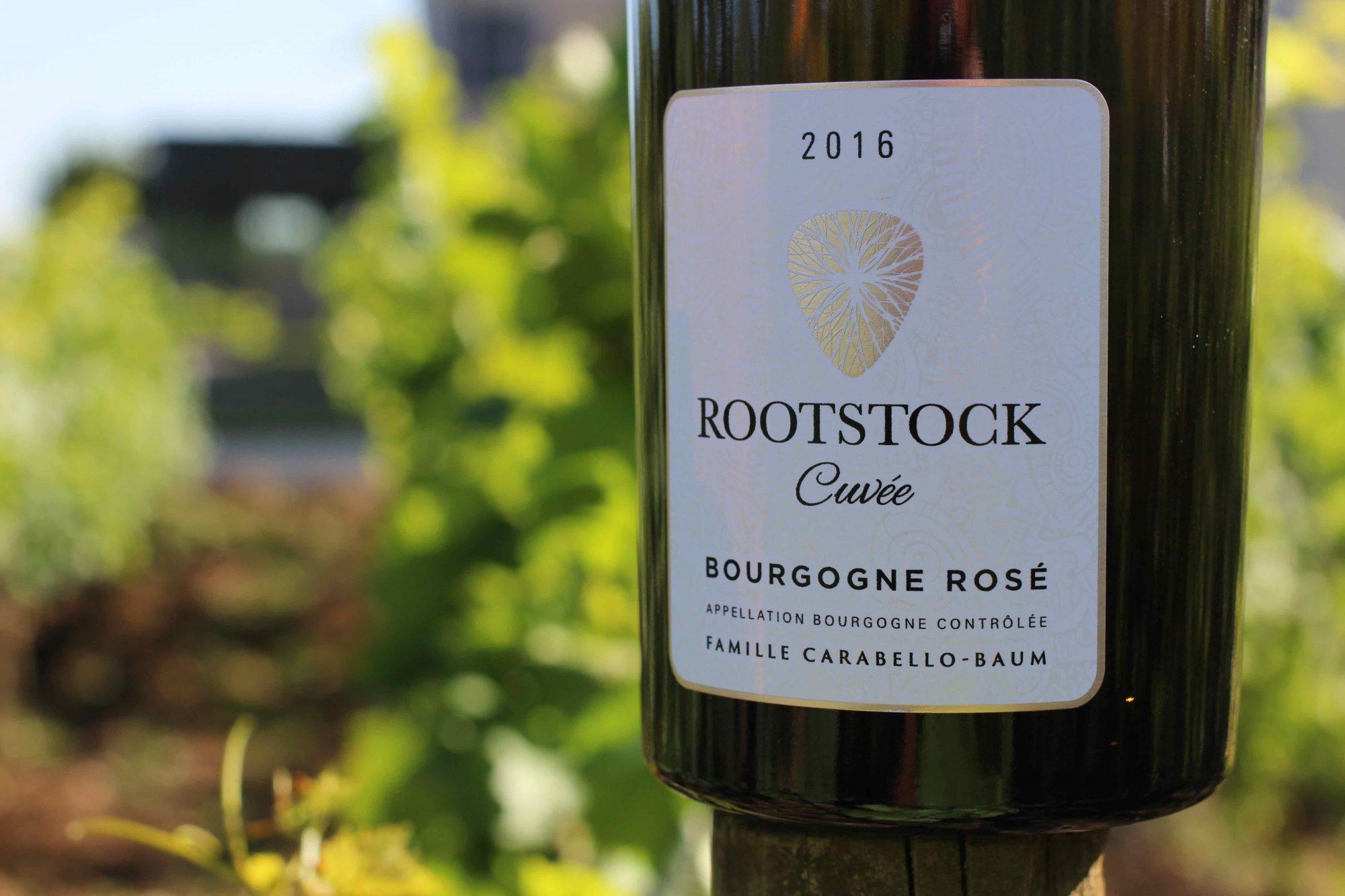 Rootstock Rosé