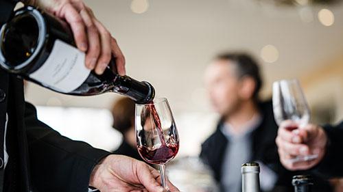 Tasting experience in Burgundy
